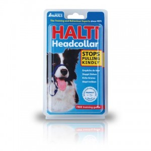 pvi-halti-headcollar-01